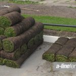 For Excellent Quality Turfing in Everton, Speak to the Experts